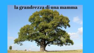 la mamma è come un albero